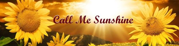 sun-banner9flower2